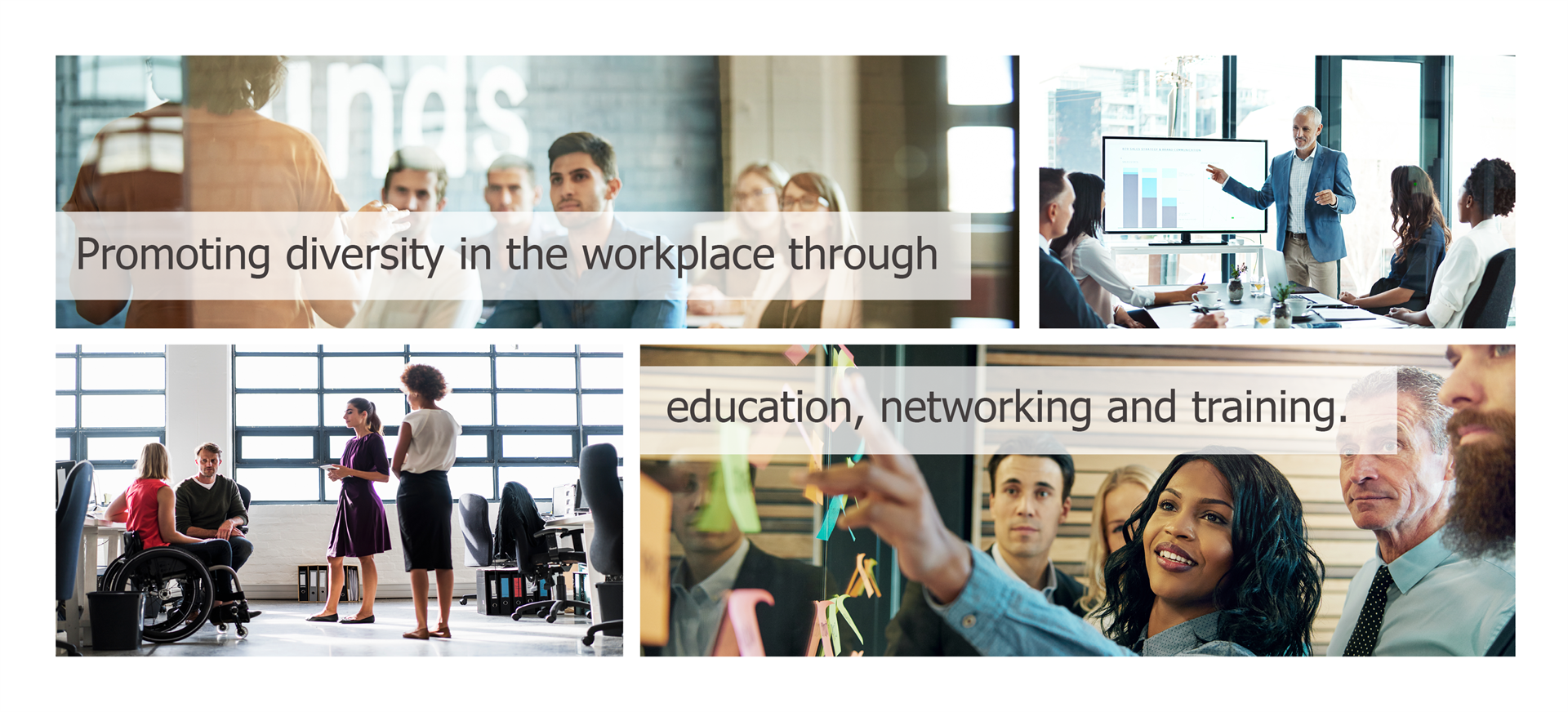 Promoting diversity in the workplace through education, networking and training.
